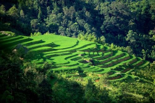 Tam Duong Surroundings