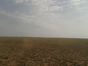 None too inspiring Gobi desert