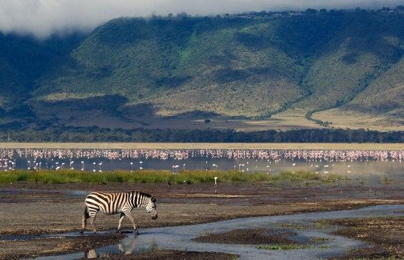 ngorongoro_crater